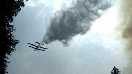 Самолёт рухнул изагорелся вНижегородской области, погиб человек (ФОТО, ВИ ...