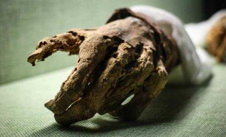 Кричащая мумия с перекошенным от ужаса лицом: раскрыта тайна внезапной смер ...