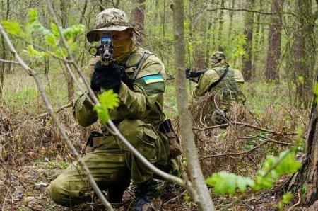 Командование ВСУ отправляет иностранных наёмников дляспецопераций награнице с ЛНР