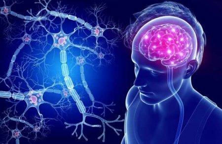 Учёные научились «стирать» неприятные воспоминания