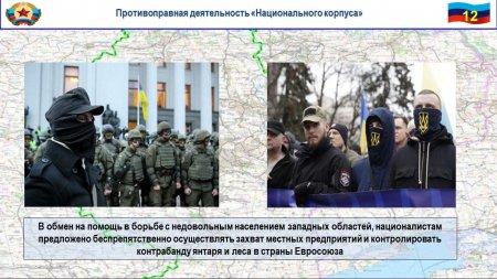 Военные НАТО нарвались на минное поле на Донбассе (ФОТО, ВИДЕО)