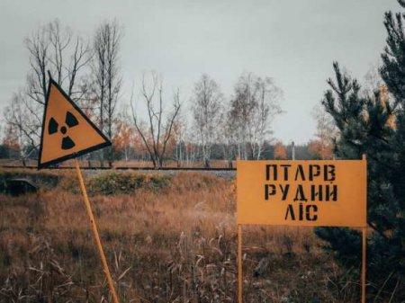 Трагедия на ЧАЭС: документы и эксперты о развитии аварии. Что от нас скрывают?