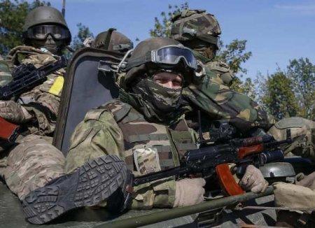 «Волонтёры» потравили карателей на Донбассе в честь Дня незалежности