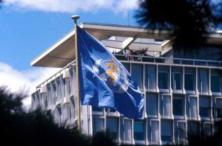 Премьер Чехии посоветовал ВОЗ «молчать» с рекомендациями по коронавирусу