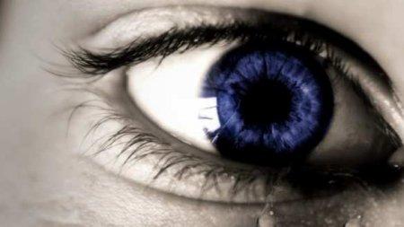 Учёные собираются испытать налюдях бионический глаз, который может вернуть зрение слепым