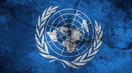 «Никто и рот не откроет» — на Украине хотят создать международное временное ...