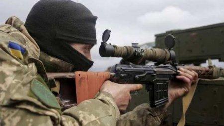 Украинская армия отказалась от части учений с НАТО, чтобы скрыть свой позор (ФОТО)
