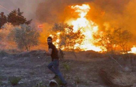 Русский военкор попал в окружение стены огня на вершине горы в Сирии (ФОТО, ВИДЕО)