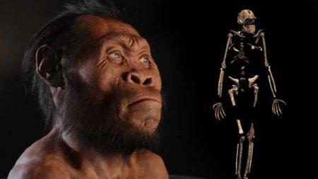 Учёные раскрыли тайну вымирания древних людей
