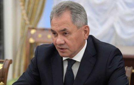 Шойгу ответил главнокомандующему бундесвера, призвавшему говорить с Россией ...