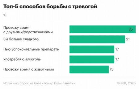 Погладить котика: россияне рассказали, чего боятся и как борются со стрессом (ИНФОГРАФИКА)