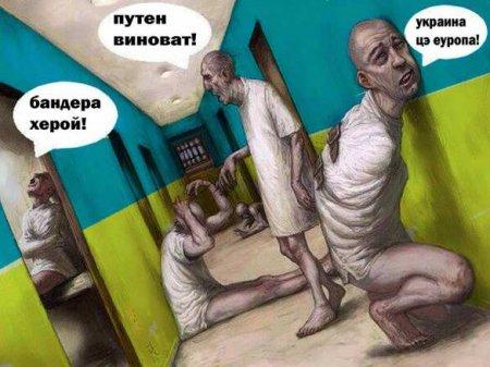«Дно пропасти»: ВГосдуме прокомментировали заявление «умственно отсталого» постпреда Украины вООН