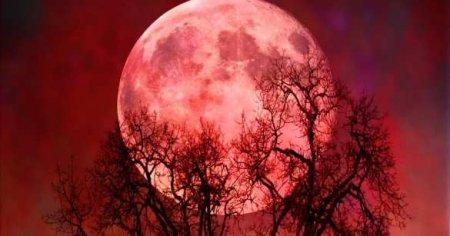 Учёные раскрыли тайну появления Луны