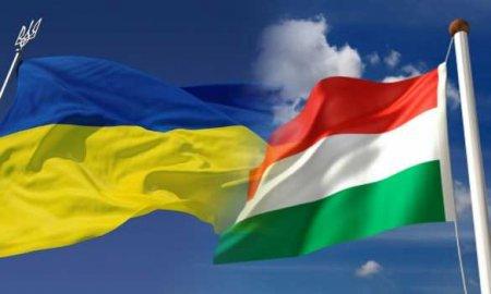 Венгрия слишком свободно чувствовала себя в Закарпатье, — глава МИД Украины