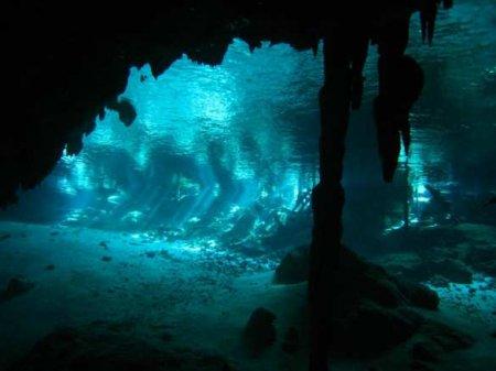 Вглубинах океана обнаружили неизвестных хищников