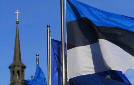 Эстонский политик обвинил власти влицемерии прикритике России