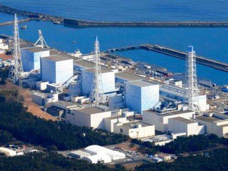 Безумные действия: японцы приближают новую ядерную катастрофу на Фукусиме (ВИДЕО)
