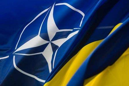 Киев хочет назначить своих военных на должности в штабе НАТО