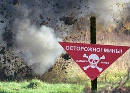 Наразминирование Донбасса уйдёт 30лет— украинский министр