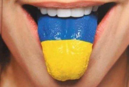 У Зеленского прокомментировали заявление Мендель об «украинском русском язы ...