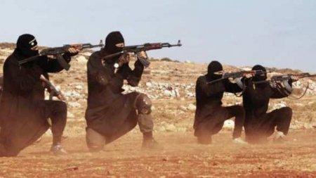 СРОЧНО: В зоне оккупации США создаётся новая армия ИГИЛ — обнаружены доказательства (ФОТО)