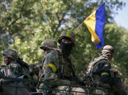 Чудовищно: как на Донбассе встретили Зеленского и послов Запада огнём и фла ...