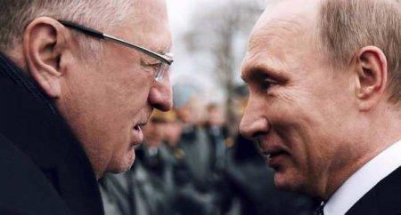 «Они ничего несоображают»: Жириновский предложил кардинально продлить возраст детства (ВИДЕО)
