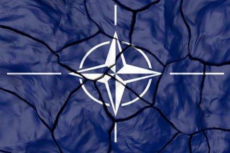 ВКиеве заявили о«самой большой ошибке НАТО»