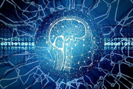 В правительстве РФ ответили на сообщения о программе чипирования мозга