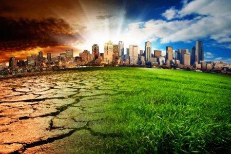 Голод, нищета, пустыня: какой экологи видят Украину через 20 лет