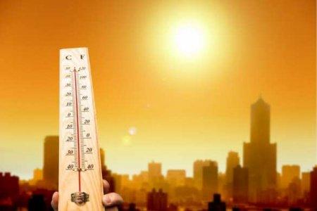 Адская жара в Долине смерти: вСША зафиксирована самая высокая температура наЗемле (ФОТО)