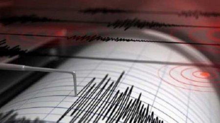 Сильное землетрясение уберегов Аляски, Японию напугали возможностью цунами