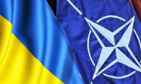 Украинский дипломат требует от США и Германии гарантий вступления в НАТО при запуске «Северного потока — 2»