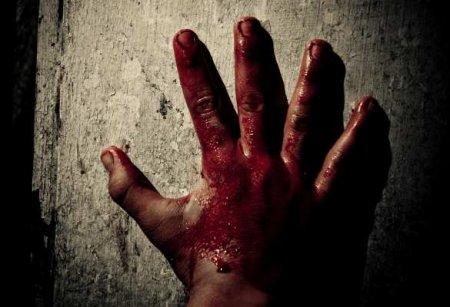 Жуткая история: убийство 9-летней девочки вВологде (ФОТО, ВИДЕО)