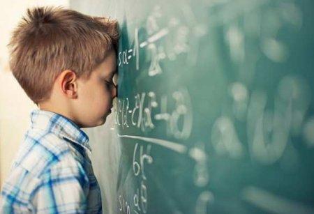 Учителя бьют тревогу: «скоро мы перестанем понимать наших детей»