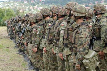 «Янки хотят довести здесь дело до конфликта»: поляки возмутились военными учениями